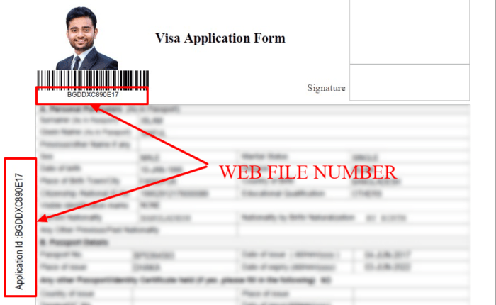 Indian Visa WEB FILE NUMBER